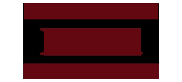 tehetseg_logo